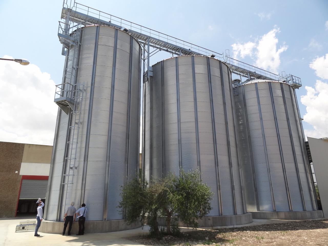 Wheat - Italia