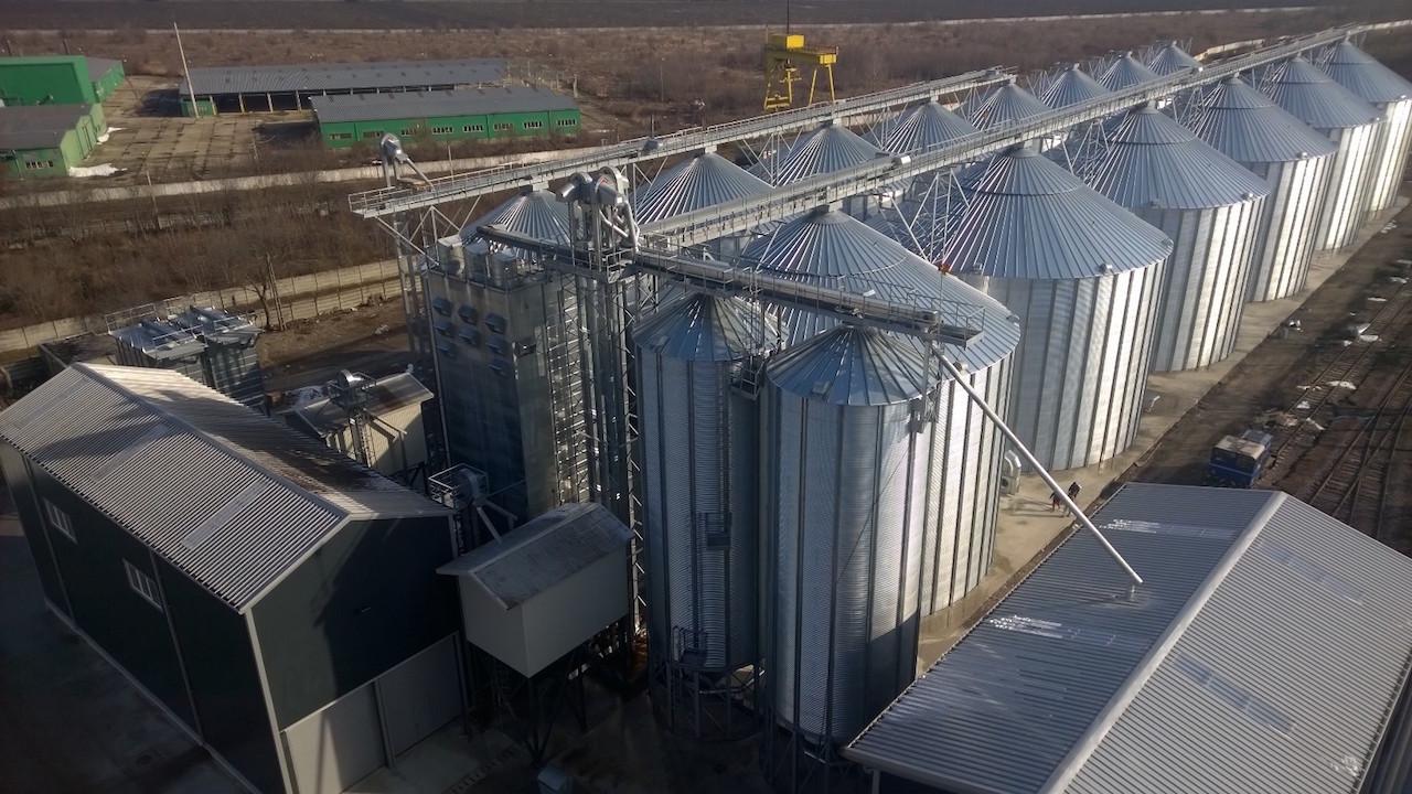 Wheat - Romania 3